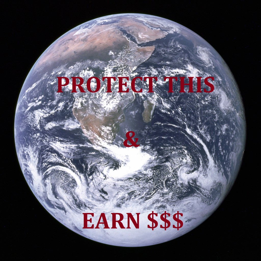 protect earth